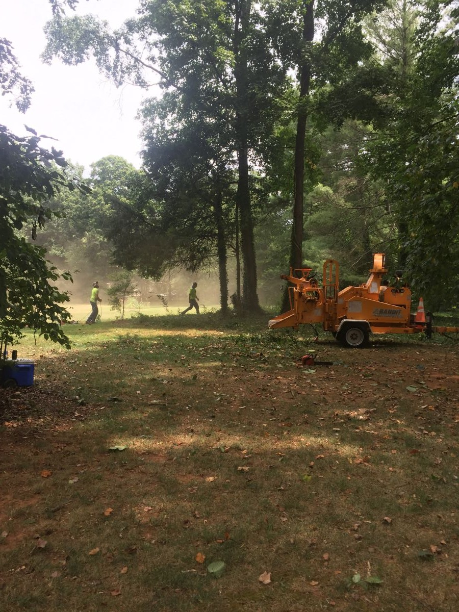 land_clearing_page_compressed